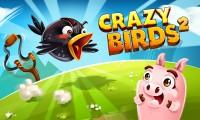 لعبة الطائر المجنون 2
